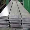 310 Stainless Steel Patti