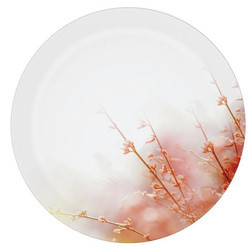 Fog Melamine Plate