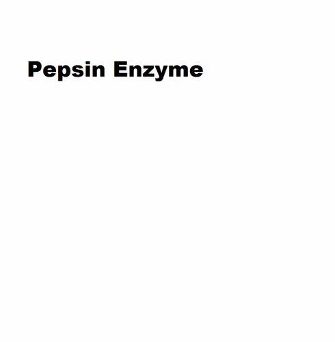 Pepsin enzyme