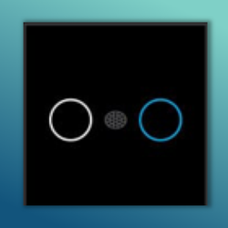 Double Light IR Modular Touch Switch