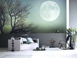 Global 3D Wall Painting Services