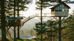 how to build a Treehouse Bangalore