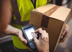 Domestic Courier Cargo Service