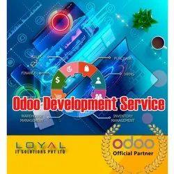 Odoo Development Service