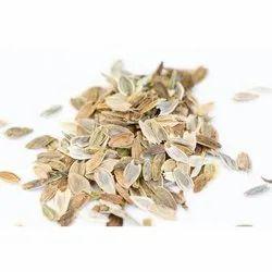 Zinnia Seed