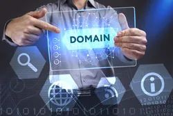 Dynamic Domain Registration, Installation Provided: Free, In Pan India