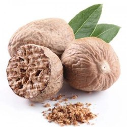Organic Nutmeg Whole, Packaging Size: 20kg Also Available 25kg