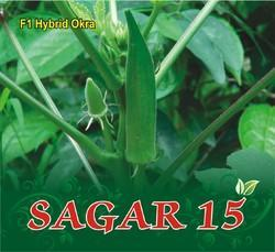 F-1 Hybrid Vegetable Seeds