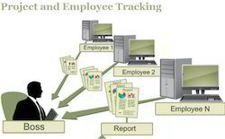 Cloud Based Employee Tracker Project Software, For Web Based