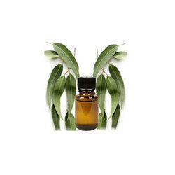 Citriodora Leaf Oil