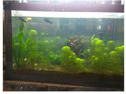 sobo air pump aquarium asian star air pump wholesaler from ahmedabad