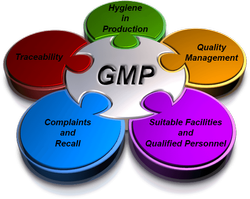 Pharmaceutical GMP Certification Services
