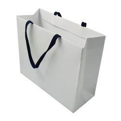 White Plain Paper Handle Bag