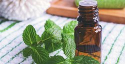 Natural Essential Oil - M
