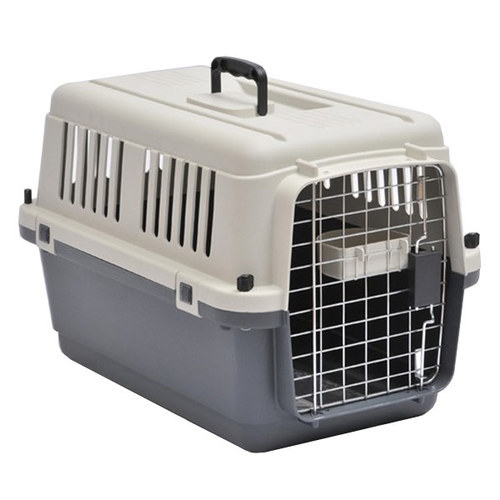 Pet Transportation Services by Road