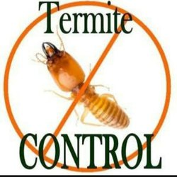 Industrial, Residential and commercial Termites Pest Control Services, in Madhyapradesh