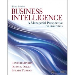Business Intelligence Services, in Pan India, Professional