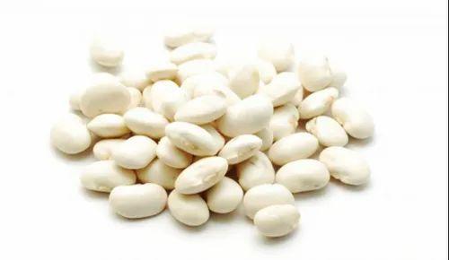 White Kidney Beans Extracts À¤• À¤¡à¤¨ À¤¬ À¤¨ À¤à¤• À¤¸à¤Ÿ À¤° À¤• À¤Ÿ À¤° À¤œà¤® À¤• À¤…र À¤• Natural Green Extracts Delhi Id 9318836033