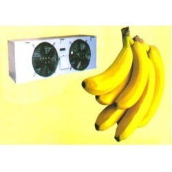 Banana Cold Room Rental Service