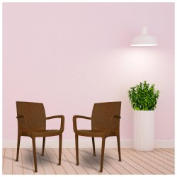 Diya Brown New Plastic Chairs (Beeta), Warranty: 1 Year