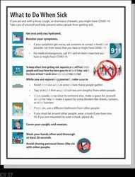 Covid-19 Safety Poster:  What To Do When Sick