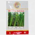 Tulasi Sindhu (tch-405) Seed