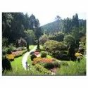 Decorative Gardening, Coverage Area: 1000 To 3000 Square Feet