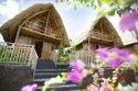 Bamboo House Architecture Delhi