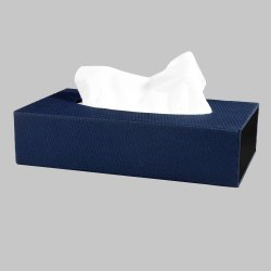 Paper Holding Tissue Box