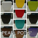 Various Square Pearl Pot