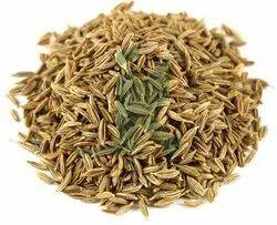 Jairamdass Khushiram Natural Cumin Seeds/ Jeera/ Cuminum Cyminum, Packaging Type: Bag, Packaging Size: 25 Kg