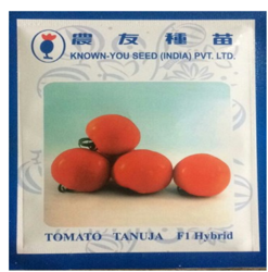 Known You Tomato Seed Tanuja