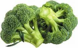 Hybrid Broccoli Seeds