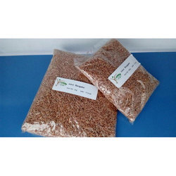 Samba Wheat, Pack Type: Packet