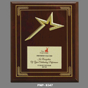 Wooden Gold Star Award