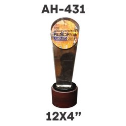 AH - 431 Acrylic Trophy
