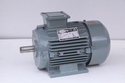 2 HP Three Phase Induction Motor