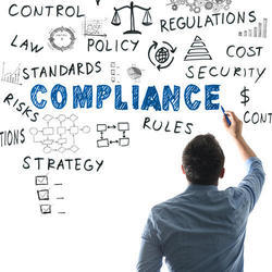 Individual Consultant Manufacturing Regulatory Compliances Services