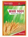 Samriddhi Mwr 9009 Research Wheat Seeds