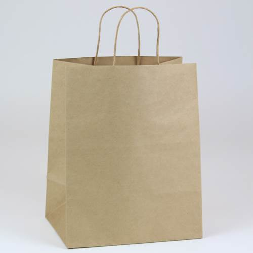a56a64485e7 Brown 100% Recycled Kraft Paper Shopping Bag