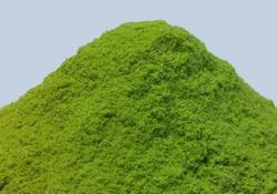 Pea Green Powder