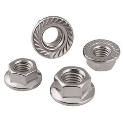 Punit Steel Stainless Steel SS Flange Nut, Packaging Type: Packet