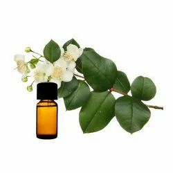 100% Pure High Quality Myrtle Essential Oil