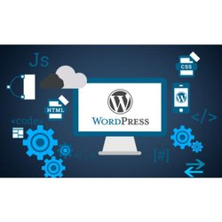 E-Commerce Enabled Wordpress Plugins & Widget Development Service