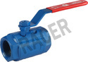 Screwed End Mild Steel Two Eye Type Ball Valve