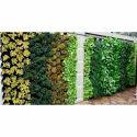 Bio Green Wall Installation Service