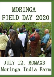 Moringa Field Day 2020