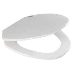 Iquinn Soft Close Toilet Seat Cover