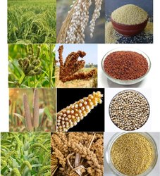 dts red Finger Millets, Country Of Origin: India, High in Protein