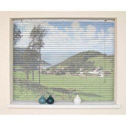 Printed Window Roller Blind